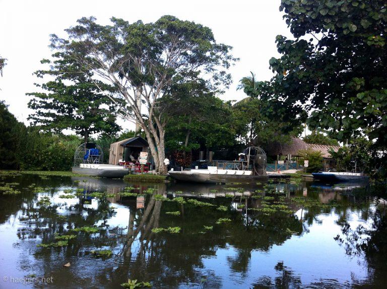 Everglades // Alligator Farm