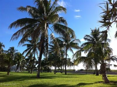 Miami // Florida