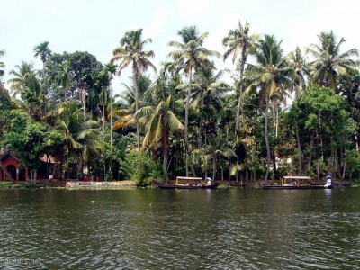 Cochin // Backwaters & Sightseeing-Tour