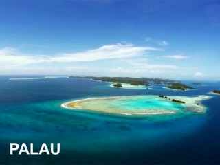 SAMS TOURS DIVING / PALAU